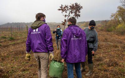 Budafok-Tétény: aktívan a környezetért