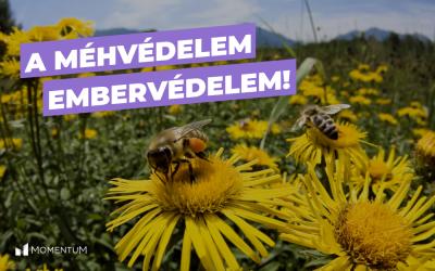 A méhvédelem embervédelem